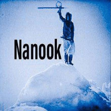 nanook kodi addon