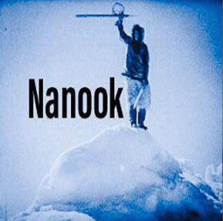 Install Nanook Addon For Kodi Great Exodus Alternative